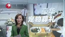 上海:宠物葬礼悄然兴起